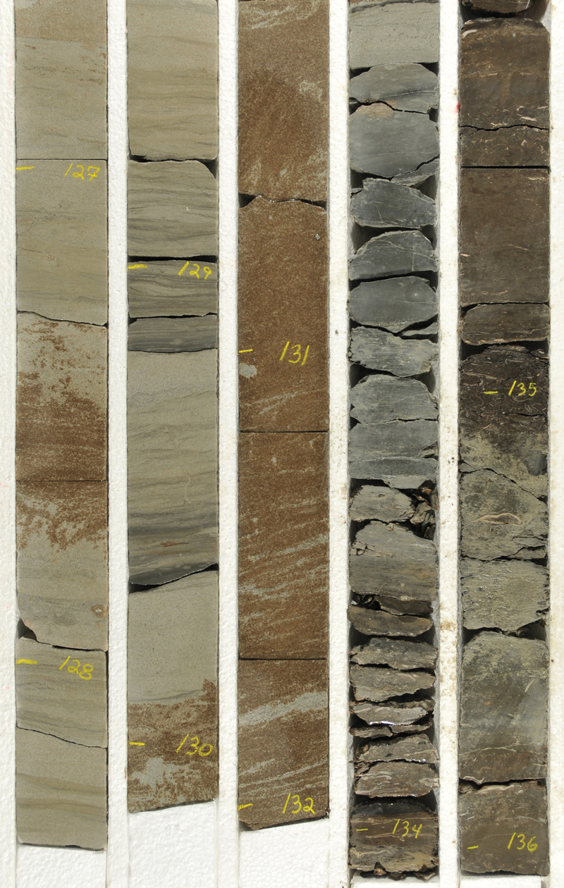 Core-box photo displaying depth-marked and slabbed sandstone with tar accumulation (left, 126.6–132.0 ft) and shallow lake deposits with freshwater bivalves (clams) (right, 132.0–136.0 ft) from the Colton Tongue–Castle Peak interval.