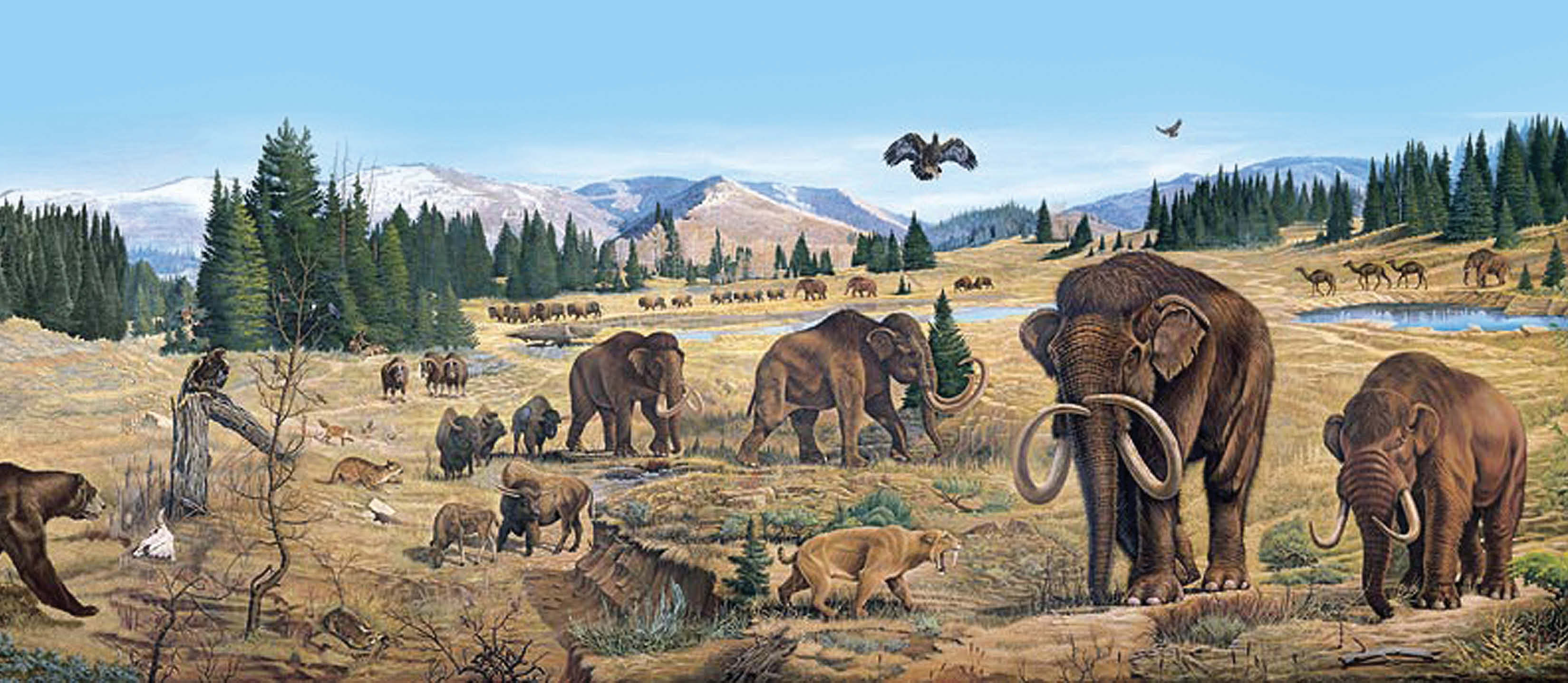 Detail of late Pleistocene life in central Utah from a mural painted by Joe Venus at the College of Eastern Utah Prehistoric Museum.