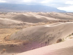 Sand dunes on the east side of Little Sahara Recreation Area. Gilson Mountains in background.