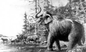 Artist L.A. Ramsey's interpretation of some Pleistocene mammals on the shore of Lake Bonneville.