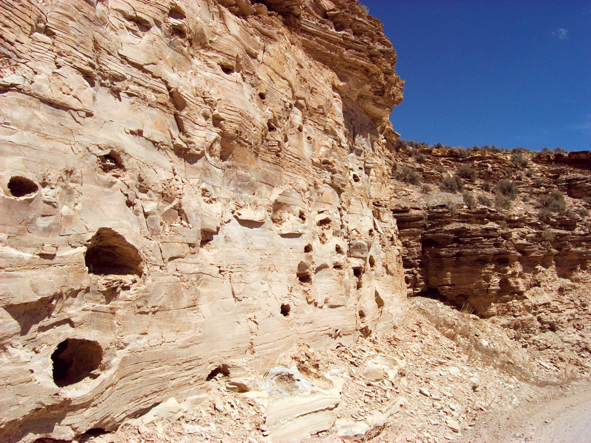 Birds Nest aquifer in outcrop along Evacuation Creek, eastern Uinta Basin. The large cavities resulted from the dissolution of saline minerals, creating the aquifer's porosity (percent of pore space) and permeability (a measure of how effectively the pores are connected).