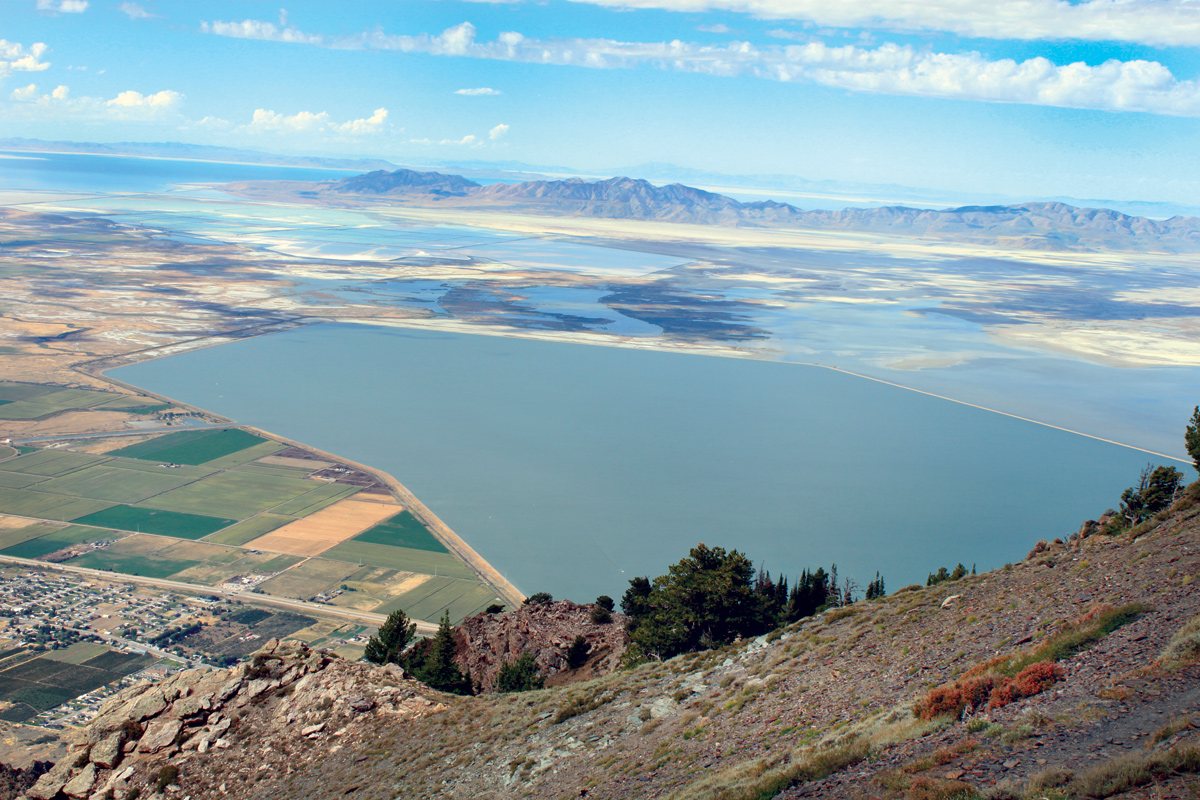 Numerous types of wetlands, including open-water, fringe, emergent, and playa, are present in Bear River Bay and Willard Bay Reservoir in the northeastern part of Great Salt Lake.
