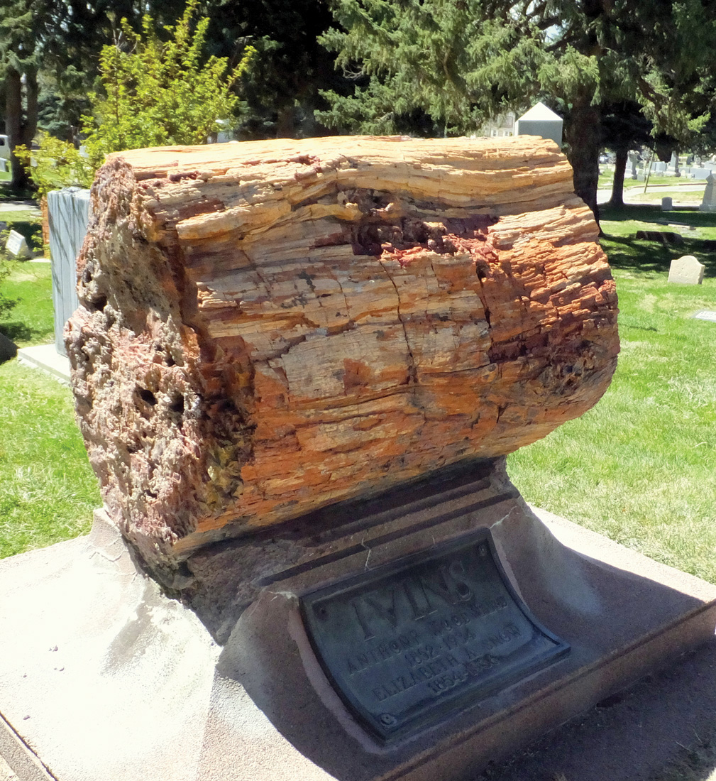 A geologically elegant monument from 1936—a sizable perched bole of petrified wood.