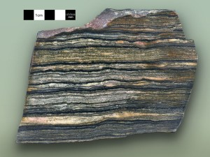 Multiple light (sand) and dark (silt and clay) bands in this piece of shale from the Big Cottonwood Formation indicate the varying energy of rising and falling tides. Photo courtesy of Marjorie A. Chan, Dept. of Geology & Geophysics, University of Utah.
